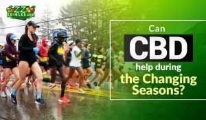 zzedibles- can cbd help during the changing seasons blog-header-one-min
